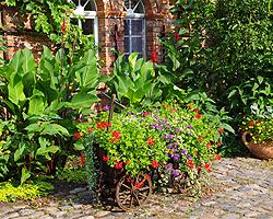 Bauerngarten | planen gestalten anlegen bepflanzen