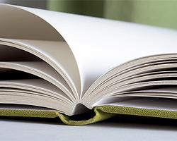 Garten-Tagebuch