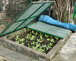 Gartentipps im März für Frühbeetkasten