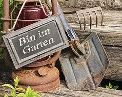 Gartentipps im September für Stauden verjüngen