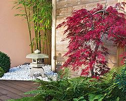 Zen Garten Anlegen Und Gestalten Bedeutung