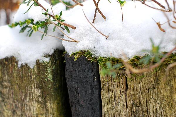 Beeteinfassung aus Holz mit Schnee bedeckt
